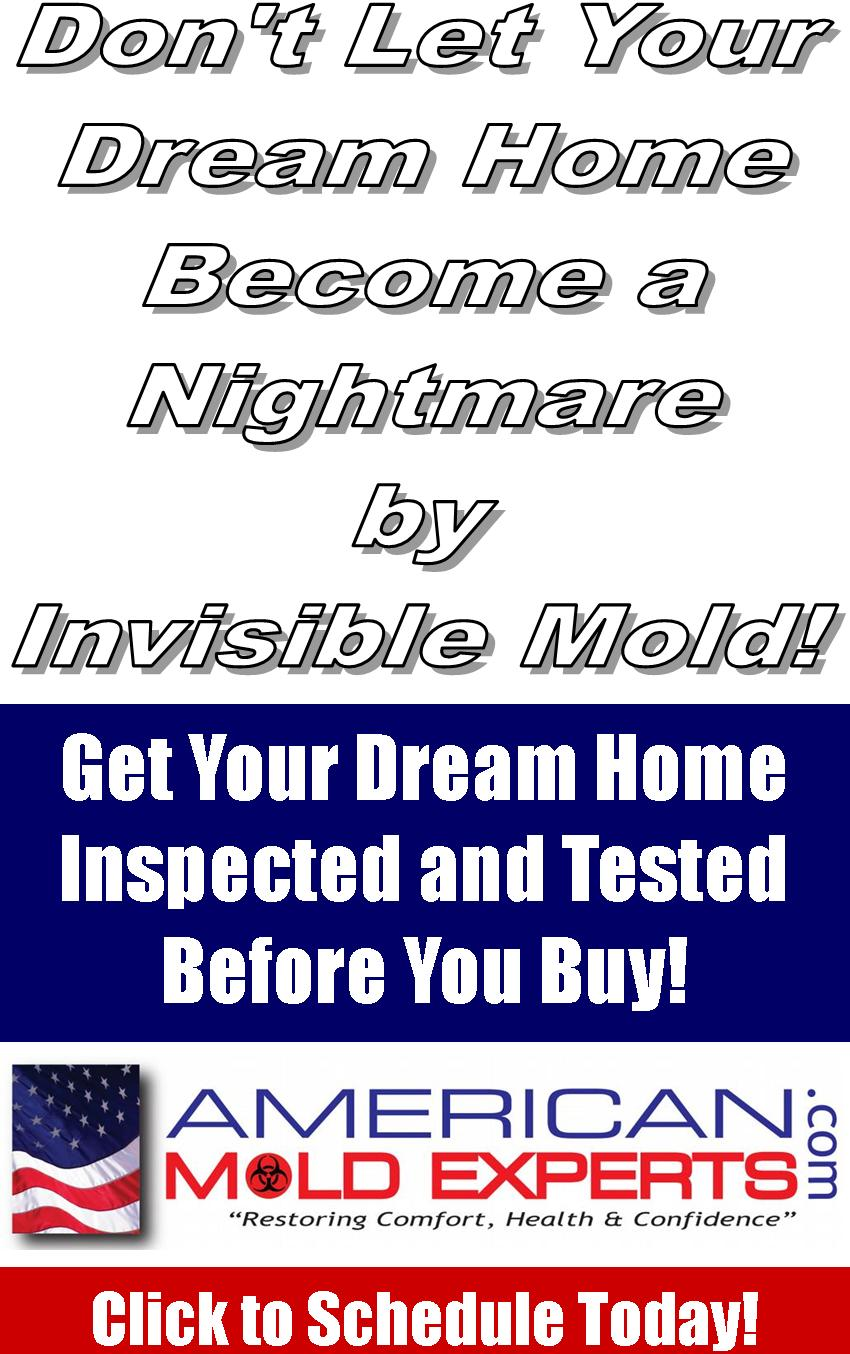 Don't let your home become a nightmare by invisible mold! Click to schedule today.